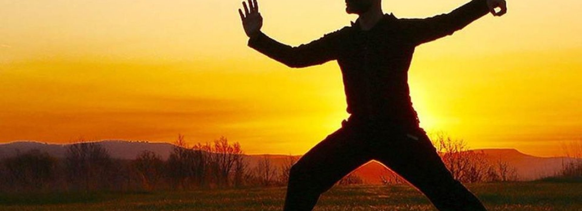 FREE Tai Chi @ Crow Point Banner